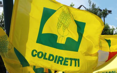 """COLDIRETTI TRENTINO - ALTO ADIGE * RAPPORTO GREENITALY 2020: « L'AGRICOLTURA ITALIANA SI CONFERMA LA PIÙ """"VERDE"""" D'EUROPA, COINVOLTI 80 MILA OPERATORI »"""