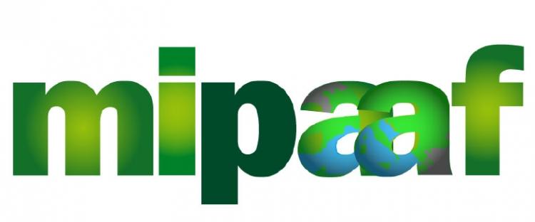 MIPAAF * FONDO RISTORAZIONE: BELLANOVA: « AL VIA DA DOMANI (15/11) CON IL SITO WWW.PORTALERISTORAZIONE.IT, PER LA PRESENTAZIONE DELLE DOMANDE »