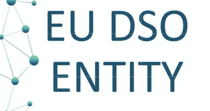 """GRUPPO DOLOMITI ENERGIA * ASSEMBLEA: « FRANCESCO FACCIOLI NOMINATO NEL BOARD DI """" EU DSO ENTITY """", L'ASSOCIAZIONE DEI DISTRIBUTORI DI ENERGIA ELETTRICA EUROPEI »"""