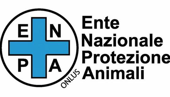 ENPA - TRENTINO * ANIMALI: « CANE AGGREDITO AL PARCO PREDARA DI TRENTO, ISTITUZIONI E FORZE DI POLIZIA AGISCANO RAPIDAMENTE PER GARANTIRE LA SICUREZZA DEI CITTADINI »