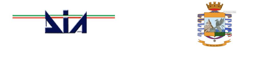 DIA E GUARDIA DI FINANZA - TRIESTE * « COSTRINGEVANO I COMMERCIANTI AMBULANTI A NON ESERCITARE LA PROPRIA ATTIVITÀ, DIVERSI ARRESTI PER ESTORSIONE NEL VENETO ORIENTALE E FRIULI VENEZIA GIULIA »
